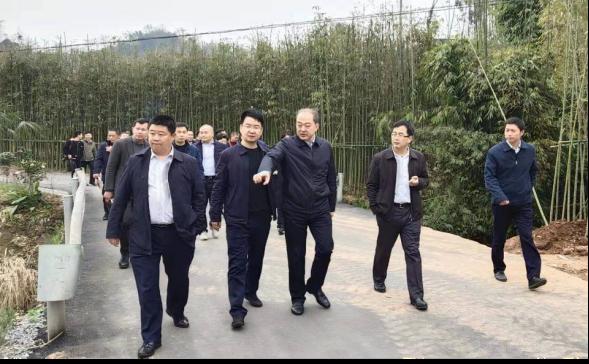 兰开驰书记现场调研雅安文旅集团产业项目